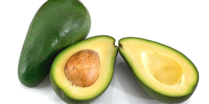 avocado ricetta guacamole