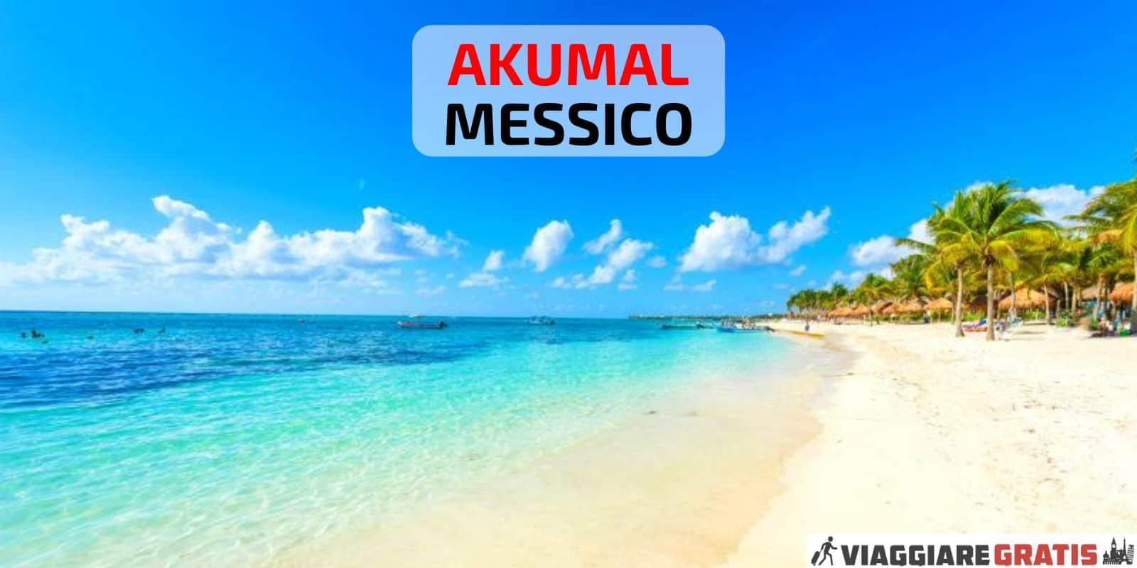 Akumal Messico tartarughe